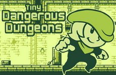 Tiny Dangerous Dungeons